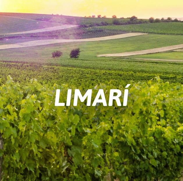 Limarí