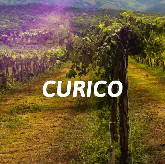 Curicó