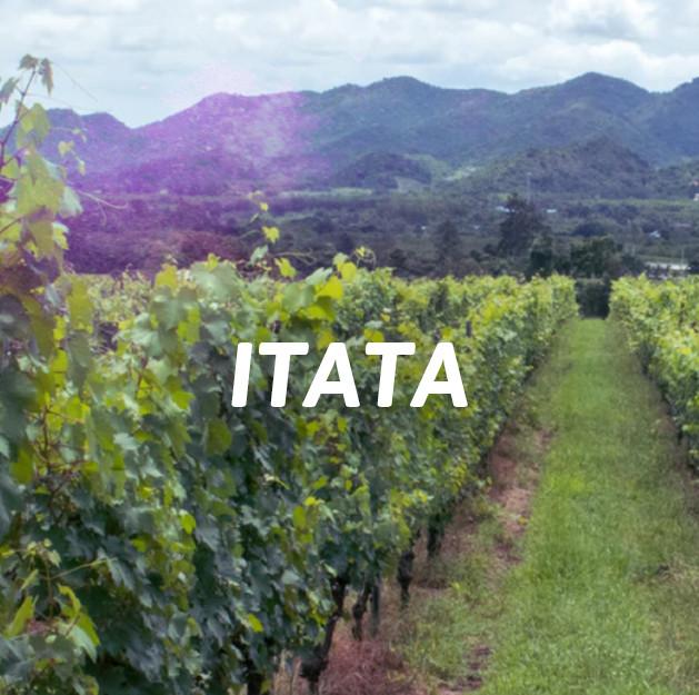 Itata