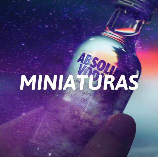 Miniaturas Licores