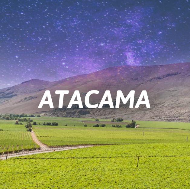 Valle de Atacama