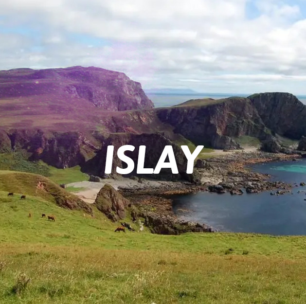 Islay - Single Malt