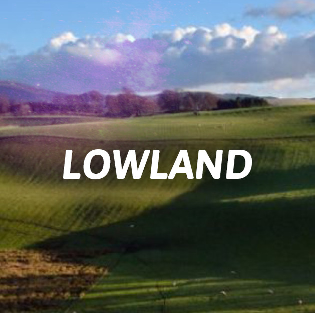 Lowland - Single Malt