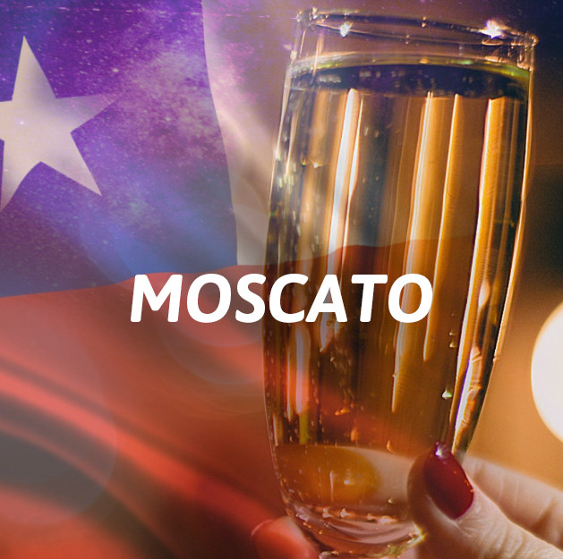 Chilenos - Moscato