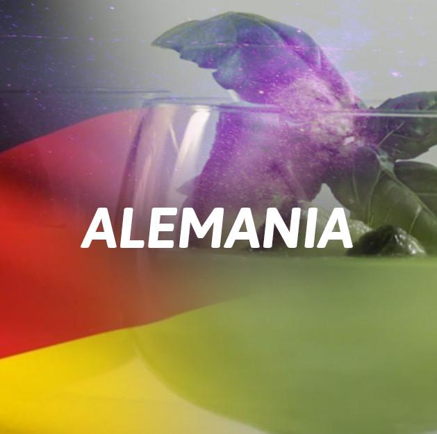 Ginebra Alemania