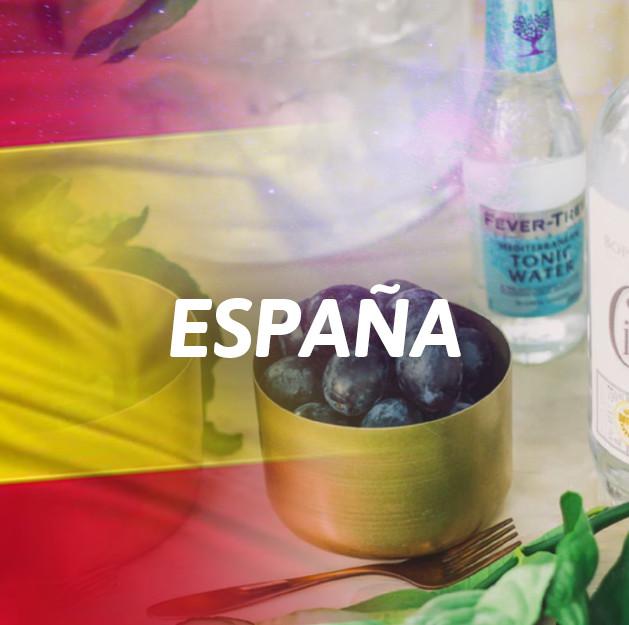 Ginebra España