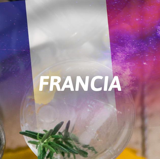 Ginebra Francia