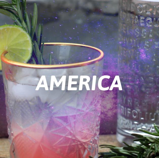 Ginebra America