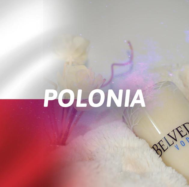Vodka Polonia