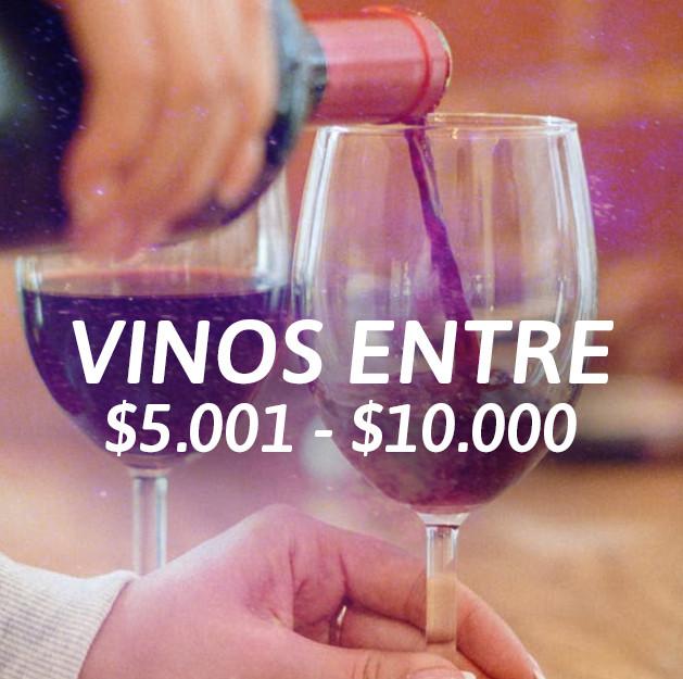 Entre $5.001 y $ 10.000