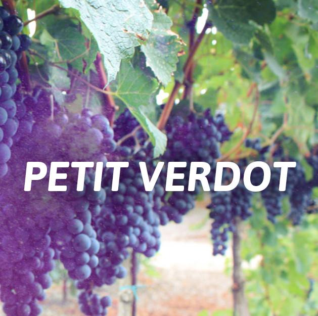 Petit Verdot