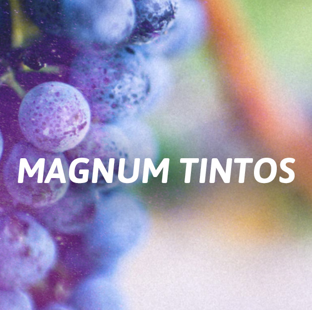 Formato Magnum 1.5L.