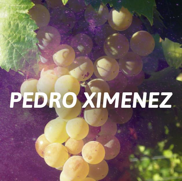 Pedro Ximenez